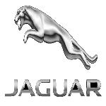 comprare auto Bolzano Jaguar